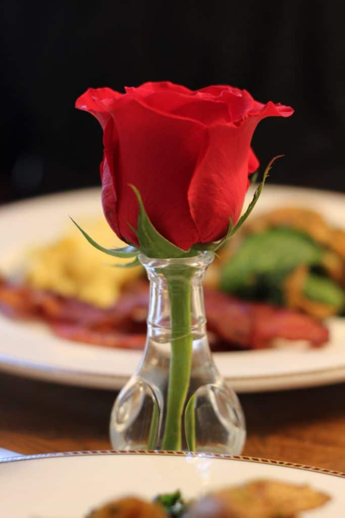 A close up of a red rose on a table with a plate of food in the background.