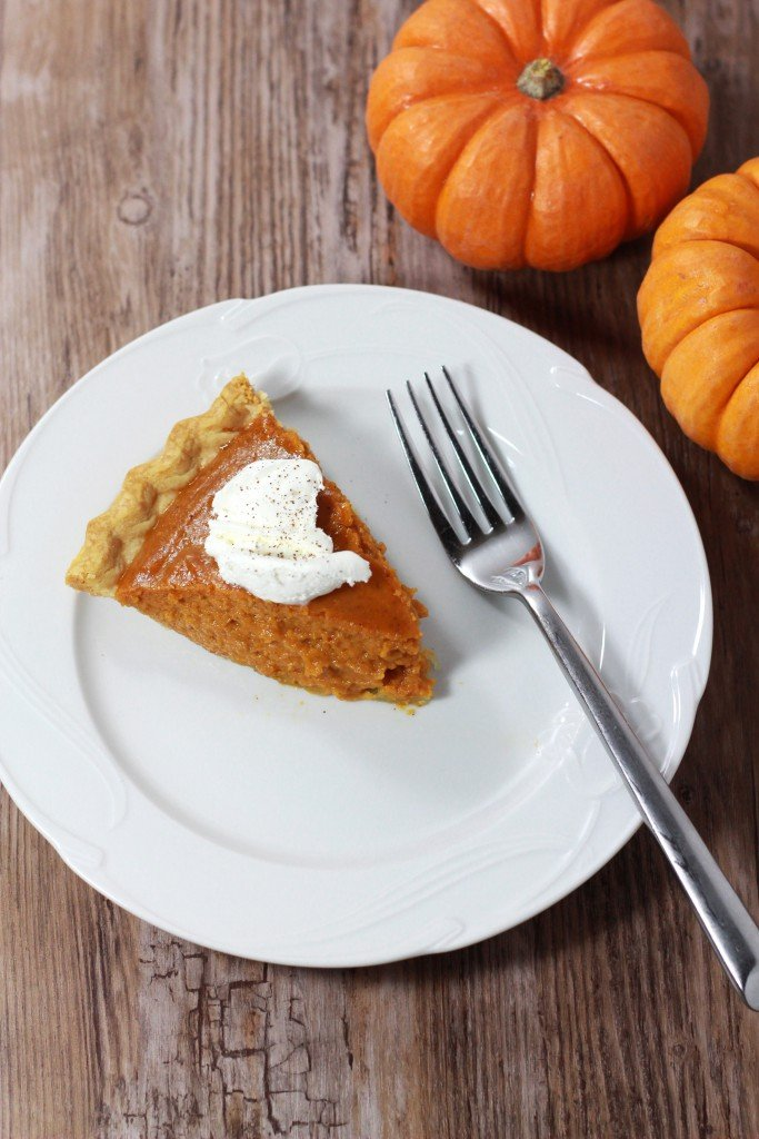 Slice of pumpkin pie topped with whip cream on a white plate sitting on a table, fork on plate. Pumpkins on table.