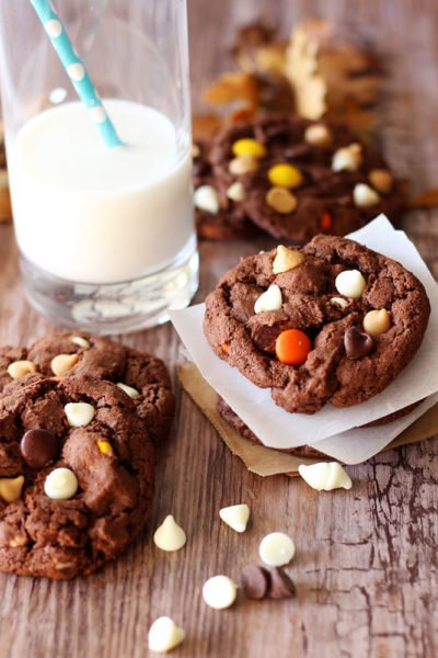 Gluten Free Double Chocolate Peanut Butter Cookies
