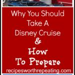 Disney Cruise Ship - The Disney Wonder on the ocean.