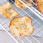 Cinnamon apple ring on a food dehydrator wire rack.