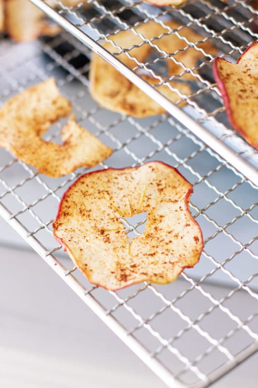 Dried apple ring on a food dehydrator wire rack.