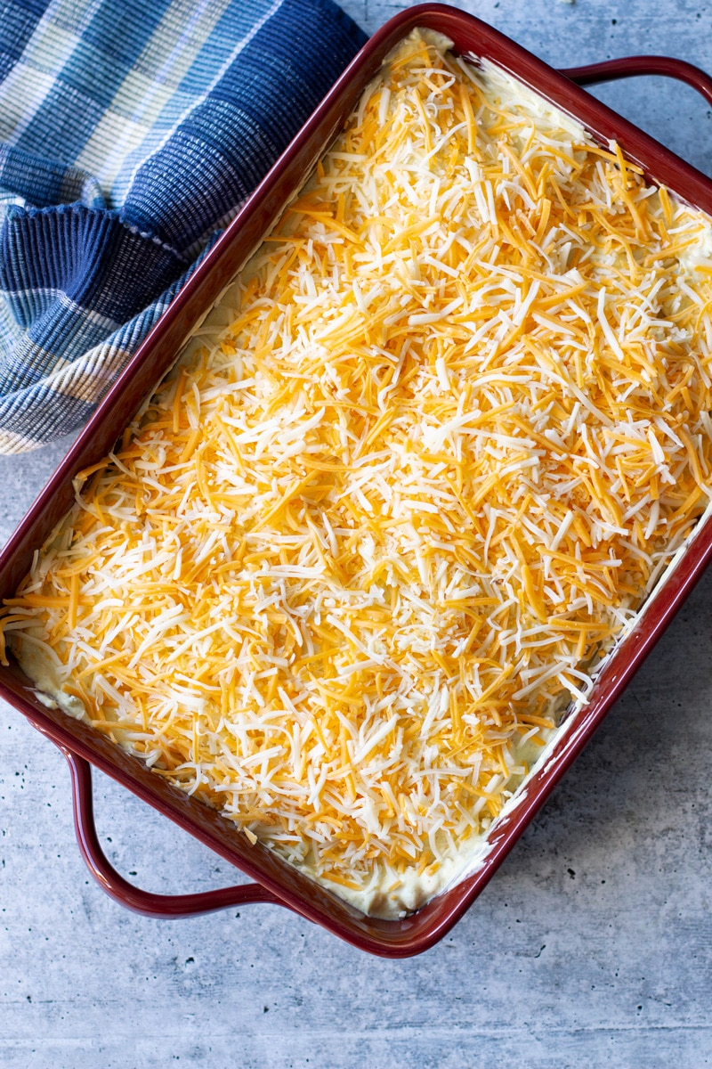Enchilada bake topped with shredded cheese.