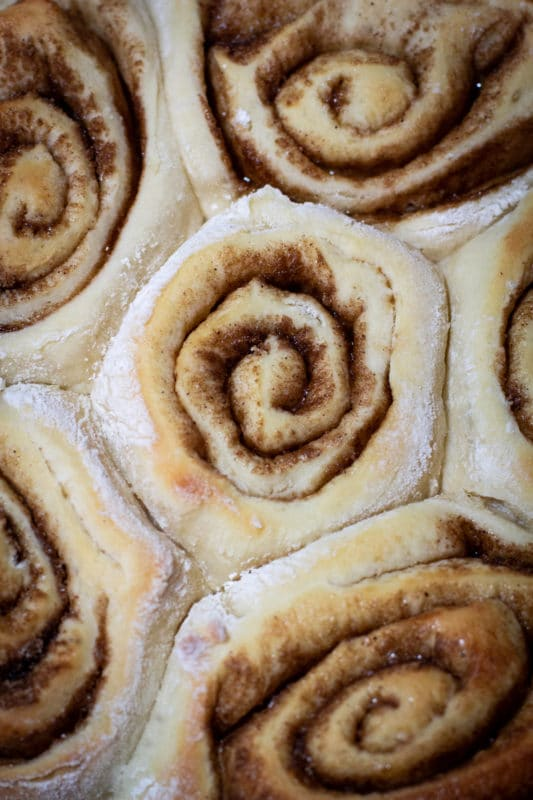 Close up of a cinnamon roll rising before baking.