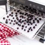 A dehydrator filled with blueberries.